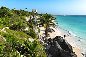 Обои для рабочего стола Мексика Берег Море Пальмы Скала Tulum Природа