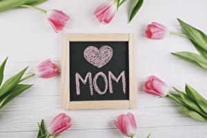Фотографии День матери Тюльпаны Праздники Английский Цветы