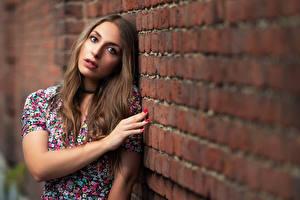 Фотография Поза Стена Кирпичный Руки Волос Смотрят Боке Шатенки Nicole девушка