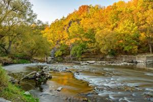 Картинки Реки Осень Лес Камень Природа