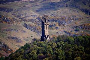Фото Шотландия Гора Дерева Башни Wallace Monument Stirling, Stirling Природа