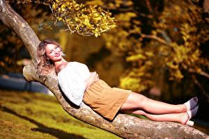 Картинки Ствол дерева Лежа Ног Улыбается Юбки Блузка Смотрит Боке Selina девушка