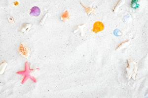 Картинка Ракушки Песка Шаблон поздравительной открытки