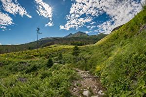 Фотография Словакия Гора Пейзаж Трава Тропа Tatras