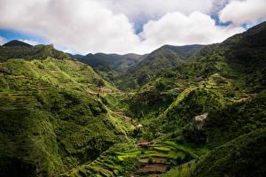 Обои Испания Горы Поля Tenerife, Macizo de Anaga Природа