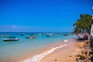 Фотографии Шри-Ланка Побережье Море Лодки Пляже Galle Природа