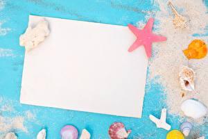 Фото Лето Ракушки Лист бумаги Шаблон поздравительной открытки Песке