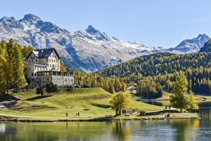 Фотографии Швейцария Гора Лес Дома Берег Альпы Отель Природа