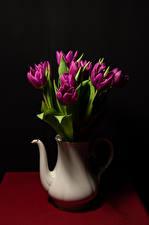 Картинки Тюльпан Черный фон Ваза Бордовые Цветы