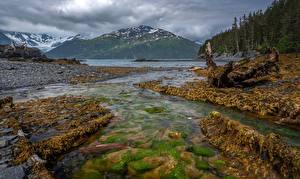 Обои Америка Аляска Гора Камень Реки Леса Whittier Природа