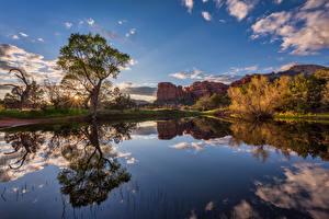Фотографии Штаты Озеро Утес Облачно Отражении Дерево Sedona, Arizona Природа