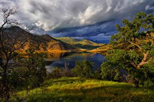 Картинки Америка Парк Озеро Пейзаж Калифорнии Холмов Деревья Трава Redwood National Park Природа