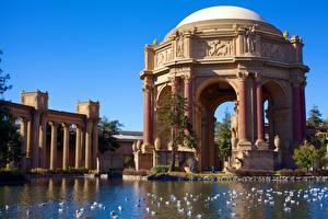 Фотографии Америка Пруд Птицы Сан-Франциско Музей Калифорния Palace of Fine Arts