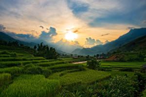 Картинки Вьетнам Горы Вечер Рассвет и закат Поля Облако Sapa Природа