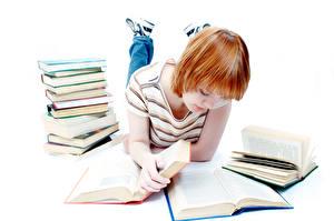 Обои Белом фоне Книги Студентка Рыжие Девушки