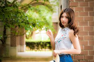 Фото Азиатки Боке Ветвь Шатенки Смотрит Рука девушка