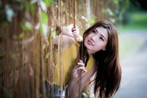 Картинка Азиатки Боке Рука Смотрит Шатенки Волос девушка