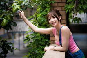 Картинки Азиатки Ветвь Руки Шатенка Взгляд Улыбка Девушки