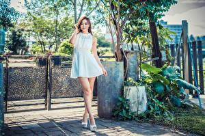 Обои Азиаты Шатенки Платье Ноги Взгляд
