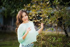 Фотография Азиаты Шатенка Улыбка Руки Ветвь Размытый фон Смотрит молодые женщины
