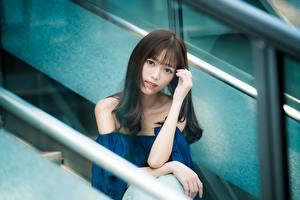Фотографии Азиаты Брюнетки Руки Взгляд Боке девушка