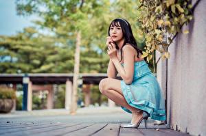 Обои Азиаты Брюнетка Сидя Платья Взгляд Боке Девушки