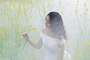 Фотографии Азиаты Туман Платье Брюнетки молодая женщина