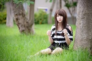 Картинки Азиатки Трава Боке Шатенка Рука Сидит девушка