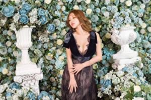 Фотографии Азиатки Роза Рука Платья Вырез на платье девушка