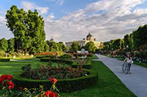 Обои Австрия Вена Парк Газоне Кустов Дизайна Дерево Уличные фонари BlumenPark