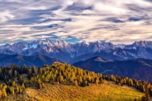 Фото Осень Гора Лес Пейзаж Горизонт