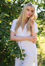 Фотография Carla Monaco Блондинка Позирует Платья Руки Ветвь Смотрят девушка
