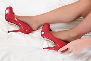 Обои Крупным планом Руки Ног Туфли Колготок молодые женщины