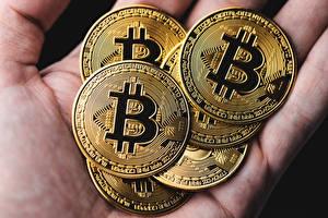Фотография Вблизи Деньги Биткоин Золотые