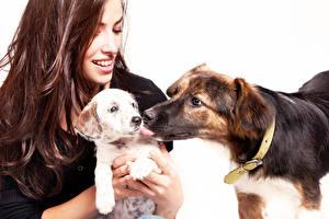 Фотографии Собаки Белым фоном Шатенки Улыбается Щенок 2 животное Девушки