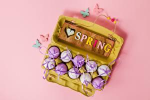 Обои Пасха Весна Яйца Английский Слово - Надпись Розовый фон Девушки картинки
