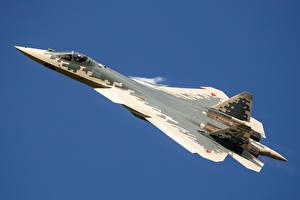 Фото Самолеты Истребители Полет Российские SU-57