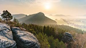 Картинка Лес Рассвет и закат Германия Парк Скала Тумане Saxon Switzerland national Park Природа