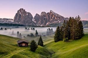 Фотография Италия Горы Дерево Туман Альп Dolomites Природа