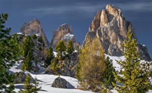 Обои Италия Зимние Альп Утес Ели Снега Canazei Trentino Природа