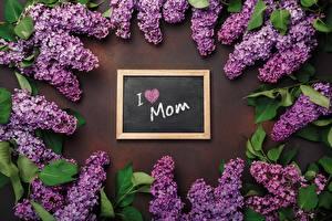 Фотография Сирень День матери Инглийские Слова