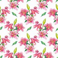 Картинка Лилии Текстура Рисованные Белым фоном цветок