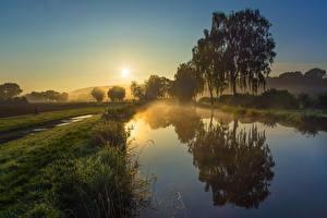 Фотография Утро Рассветы и закаты Водный канал Солнца Траве Деревья Тумане Отражение Природа