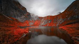 Картинка Норвегия Горы Озеро Скалы Hamnøy, Hamnøyvatnet Природа