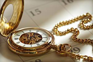 Фотография Карманные часы Часы Золотая Механизм