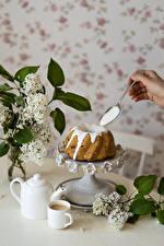 Фотографии Кекс Кофе Сирень Ложка Кружка Продукты питания Цветы