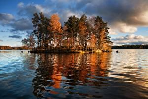 Фотографии Россия Озеро Остров Деревьев Vuoksa Lake, Leningrad region, Priozersky district