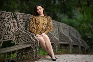 Фотографии Скамейка Сидит Ноги Платье Смотрит Боке Sarah молодая женщина