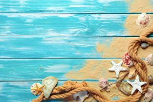 Обои Морские звезды Ракушки Лето Доски Песок Шаблон поздравительной открытки Канат Автомобили картинки