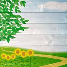 Обои Подсолнухи Доски Ветки Шаблон поздравительной открытки Природа